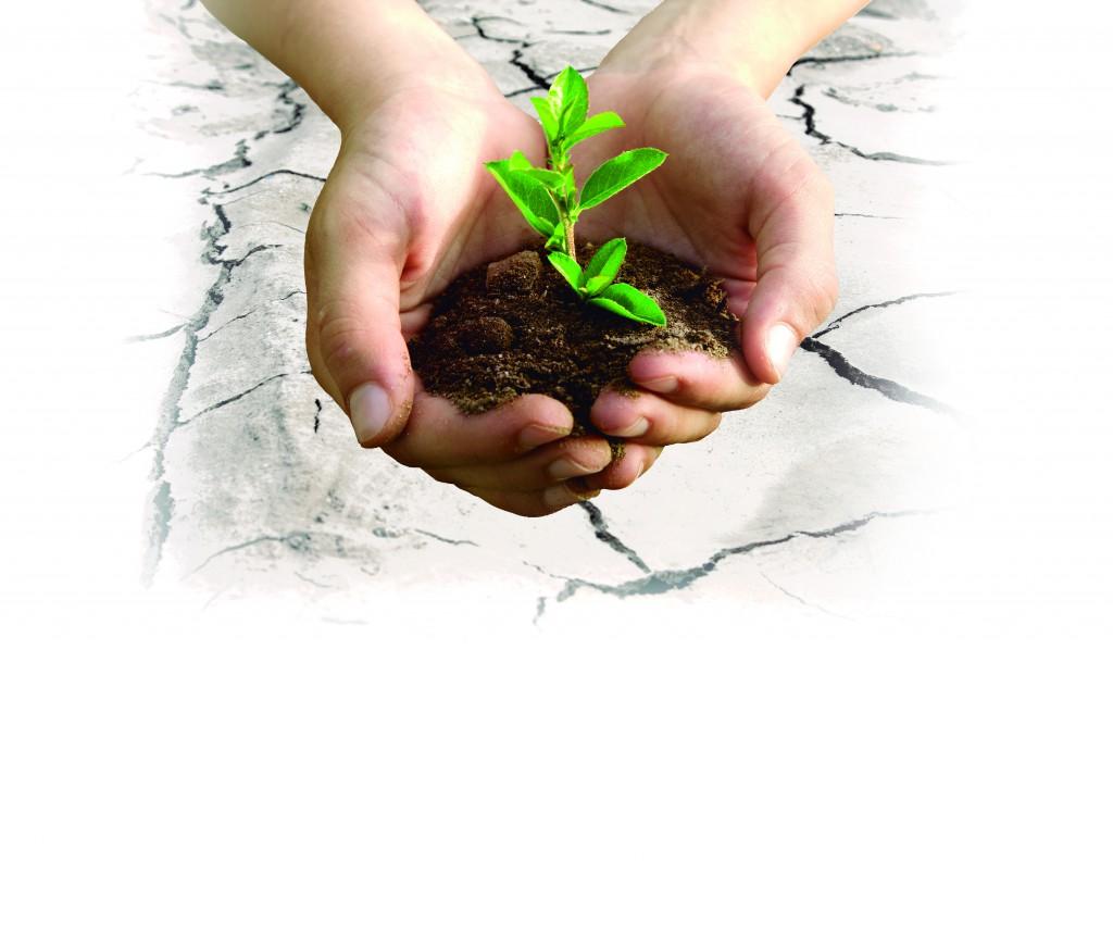 desarrollo sostenible, concepto